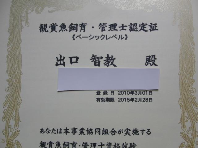 CIMG8738.JPG